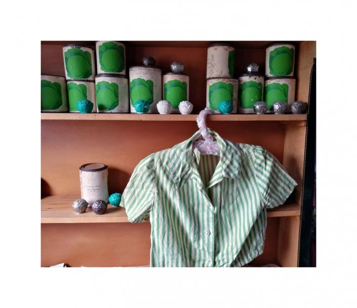 Product Shelf Cabbage Enterprises Archive